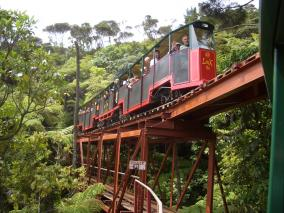 Driving Creek Railway  - Coromandel