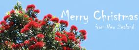 Merry Christmas from New Zealand