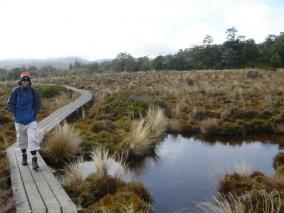 Mt Ruapehu Base Walk