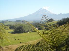 Mt Taranaki from Burgess Park hilltop