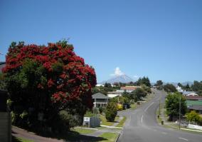 New Plymouth Summer