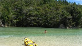 Swimming in the Abel Tasman National Park