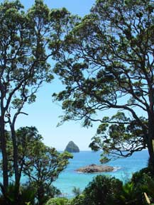 The beautiful Coromandel